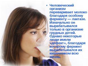 Человеческий организм переваривает молоко благодаря особому ферменту — лактаз