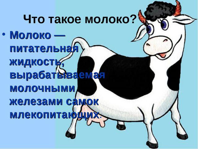 Что такое молоко? Молоко — питательная жидкость, вырабатываемая молочными жел...