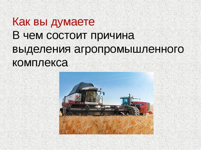 Как вы думаете В чем состоит причина выделения агропромышленного комплекса