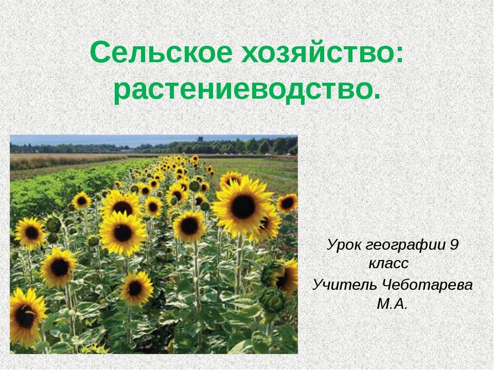 Сельское хозяйство: растениеводство. Урок географии 9 класс Учитель Чеботарев...