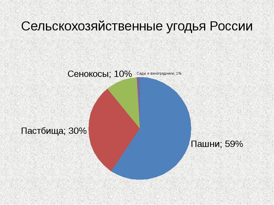 Сельскохозяйственные угодья России