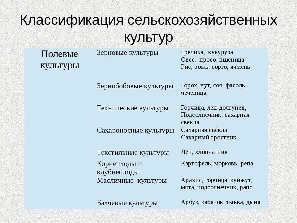 Классификация сельскохозяйственных культур Полевые культуры Зерновые культуры...