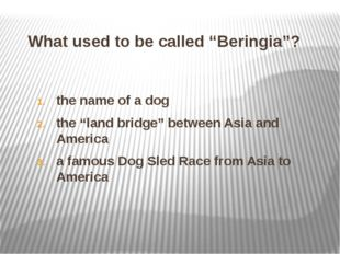"""What used to be called """"Beringia""""? the name of a dog the """"land bridge"""" betwee"""