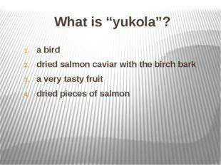 "What is ""yukola""? a bird dried salmon caviar with the birch bark a very tasty"