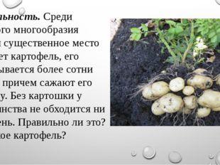 Актуальность.Среди большого многообразия овощей существенное место занимает