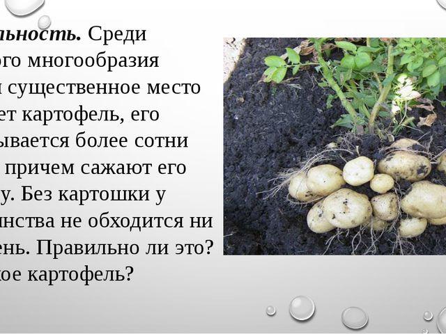 Актуальность.Среди большого многообразия овощей существенное место занимает...