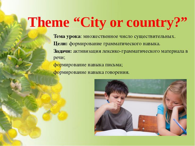 "Theme ""City or country?"" Teма урока: множественное число существительных. Цел..."