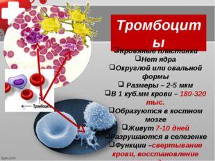 Тромбоциты Кровяные пластинки Нет ядра Округлой или овальной формы Размеры –