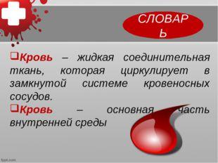 Кровь – жидкая соединительная ткань, которая циркулирует в замкнутой системе