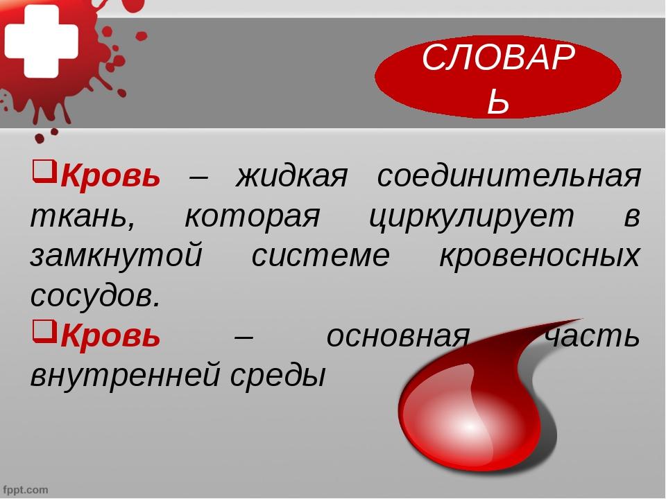 Кровь – жидкая соединительная ткань, которая циркулирует в замкнутой системе...
