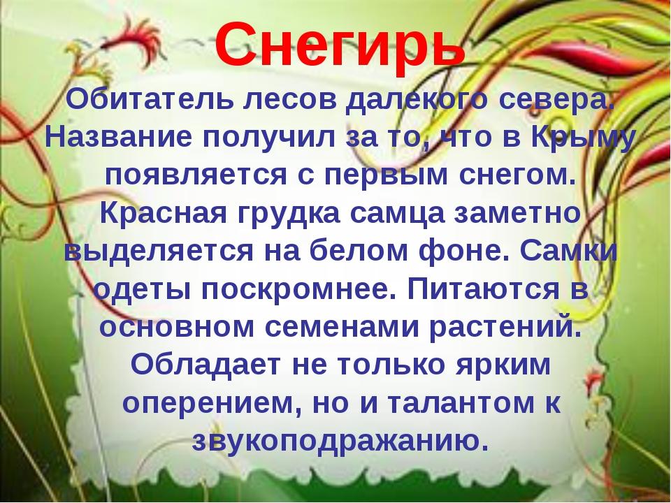 Снегирь Обитатель лесов далекого севера. Название получил за то, что в Крыму...