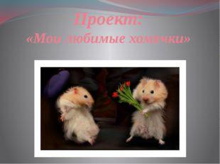 Проект: «Мои любимые хомячки»