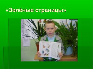 «Зелёные страницы»