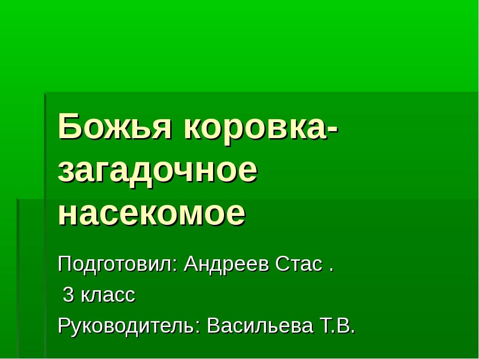 Божья коровка- загадочное насекомое Подготовил: Андреев Стас . 3 класс Руково...