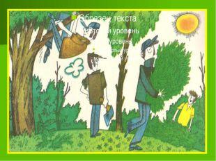 Мы рубим лес, устраиваем свалки. Но кто же под защиту все возьмет? Пусты руч