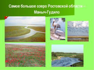 Самое большое озеро Ростовской области – Маныч-Гудило