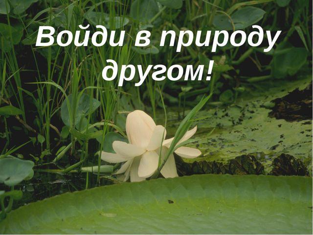 Войди в природу другом!