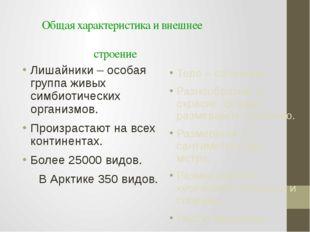 Общая характеристика и внешнее строение Лишайники – особая группа живых симби