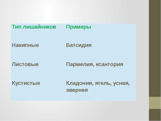 Тип лишайников Примеры Накипные Батсидия Листовые Пармелия, ксантория Кустист...