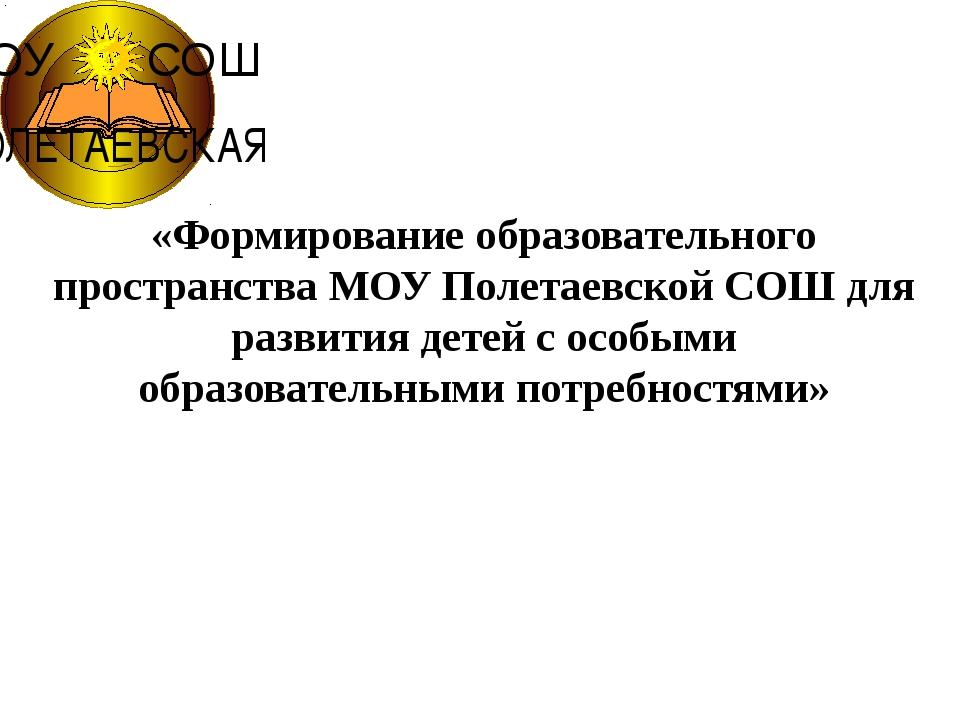 «Формирование образовательного пространства МОУ Полетаевской СОШ для развити...