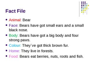 Fact File Animal: Bear Face: Bears have got small ears and a small black nose