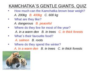 KAMCHATKA`S GENTLE GIANTS. QUIZ How much can the Kamchatka brown bear weigh?