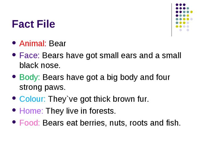 Fact File Animal: Bear Face: Bears have got small ears and a small black nose...