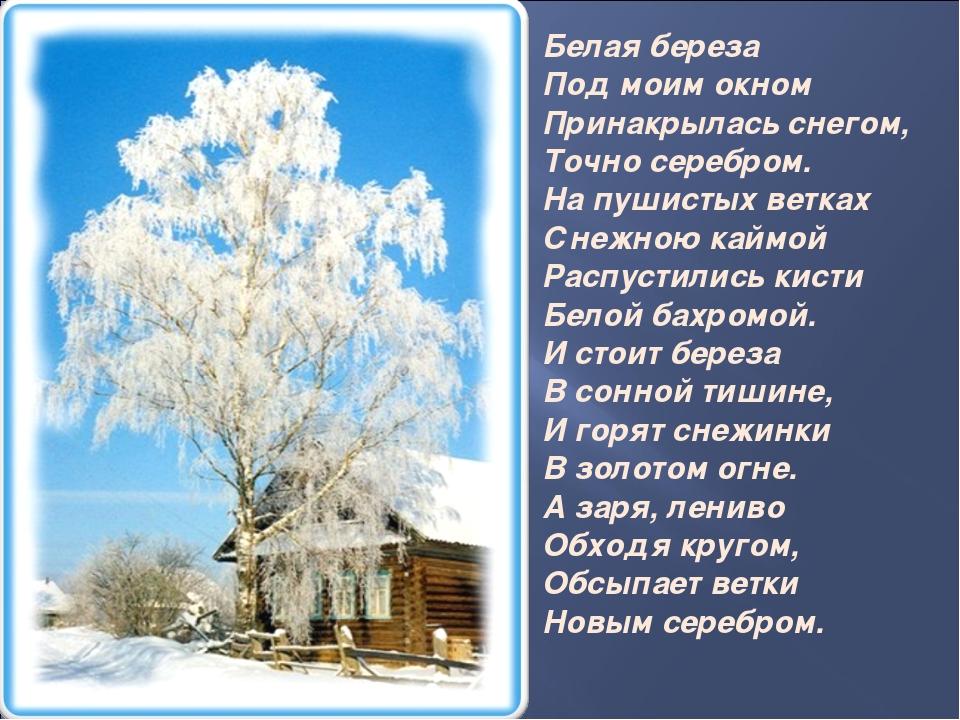 Белая береза Под моим окном Принакрылась снегом, Точно серебром. На пушист...