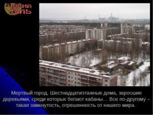 Мертвый город. Шестнадцатиэтажные дома, заросшие деревьями, среди которых бег