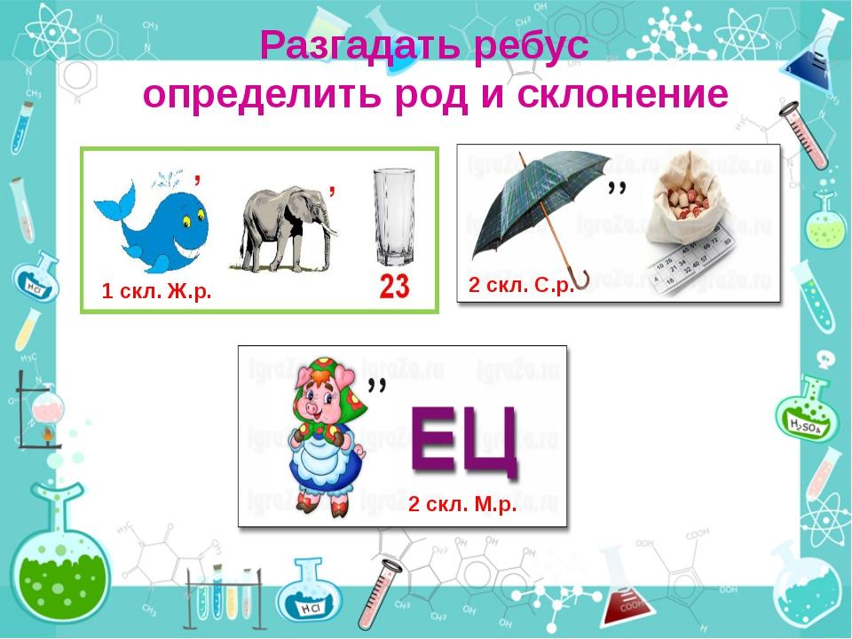 Разгадать ребус определить род и склонение 1 скл. Ж.р. 2 скл. С.р. 2 скл. М.р.
