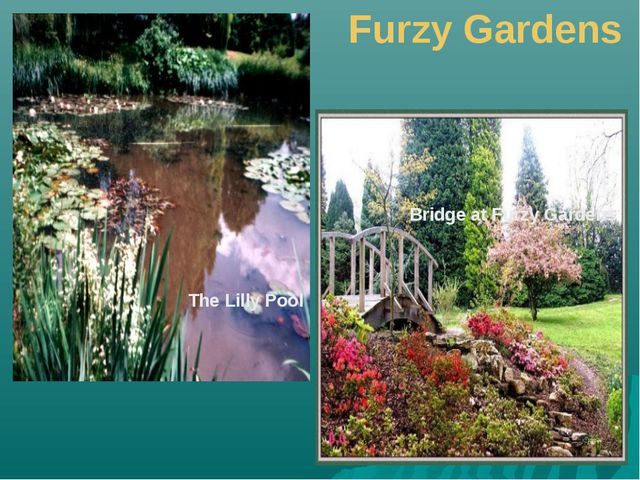 Furzy Gardens The Lilly Pool Bridge at Furzy Gardens