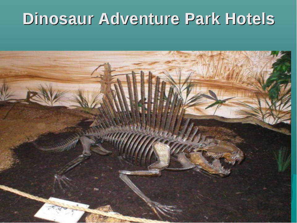 Dinosaur Adventure Park Hotels