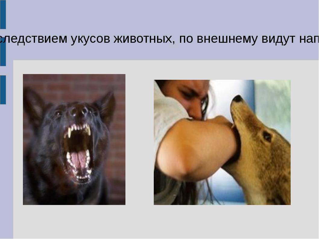 Раны, являющиеся последствием укусов животных, по внешнему видут напоминают р...