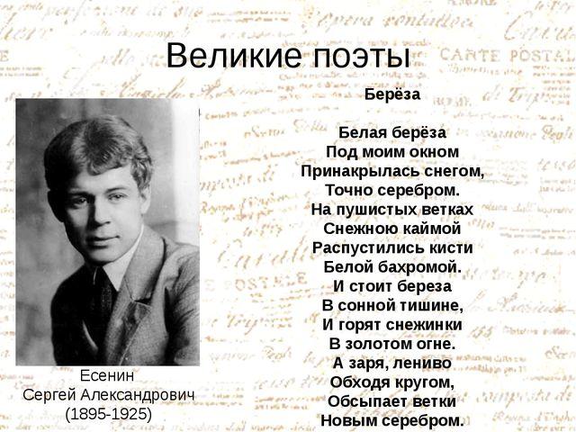 Великие поэты Есенин Сергей Александрович (1895-1925) Берёза Белая берёза Под...