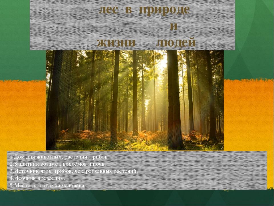 1.Дом для животных, растений, грибов. 2.Защитник воздуха, водоёмов и почв. 3....