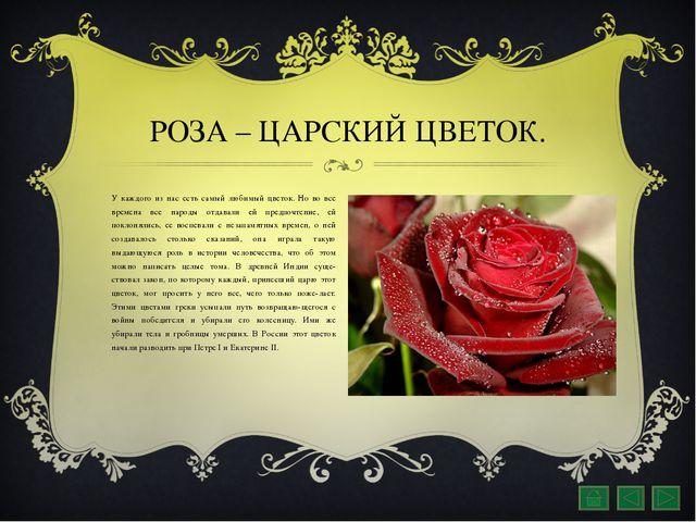 РОЗА – ЦАРСКИЙ ЦВЕТОК. У каждого из нас есть самый любимый цветок. Но во все...