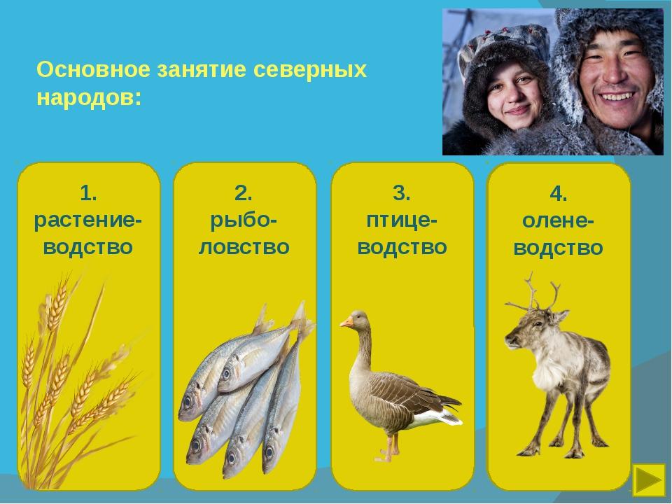 Основное занятие северных народов: 1. растение-водство 2. рыбо-ловство 3. пти...