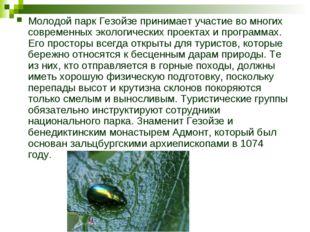 Молодой парк Гезойзе принимает участие во многих современных экологических пр