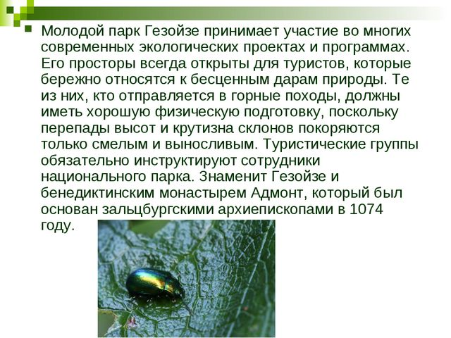 Молодой парк Гезойзе принимает участие во многих современных экологических пр...