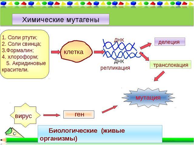 Химические мутагены 1. Соли ртути; 2. Соли свинца; 3.Формалин; 4. хлороформ;...