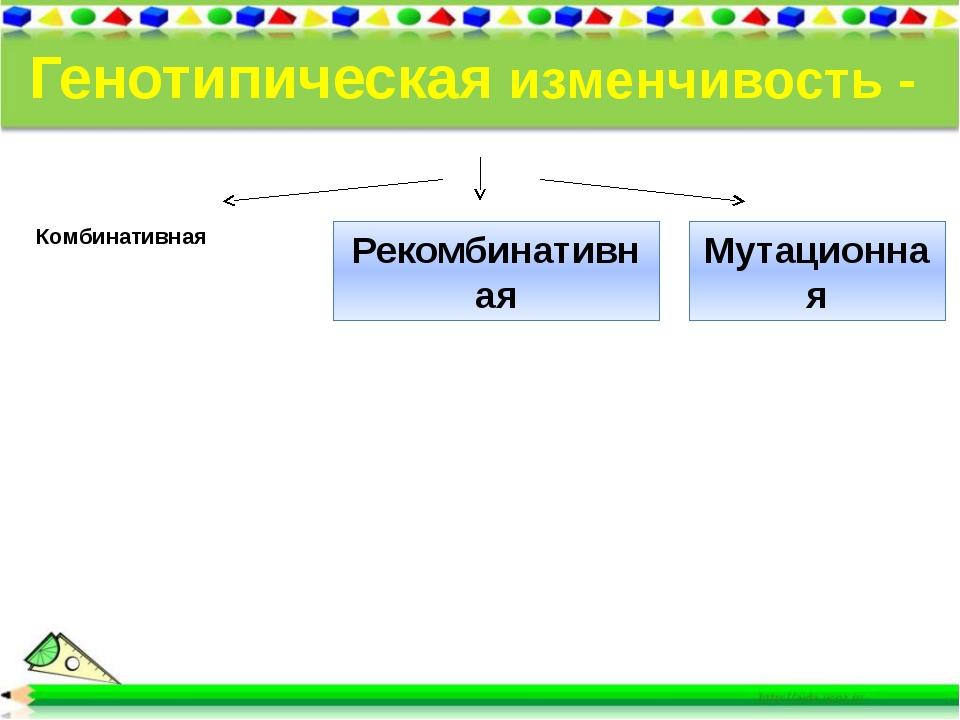 Генотипическая изменчивость - неопределенная - индивидуальная. Комбинативная...