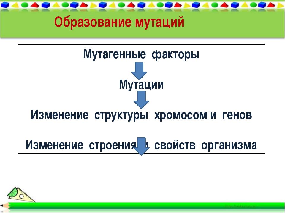 Образование мутаций Мутагенные факторы Мутации Изменение структуры хромосом и...