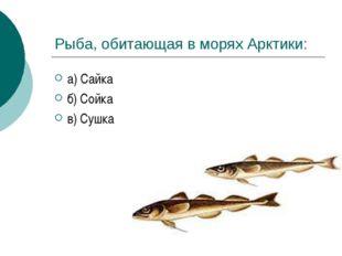 Рыба, обитающая в морях Арктики: а) Сайка б) Сойка в) Сушка