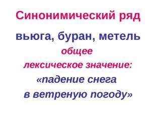 Синонимический ряд вьюга, буран, метель общее лексическое значение: «падение