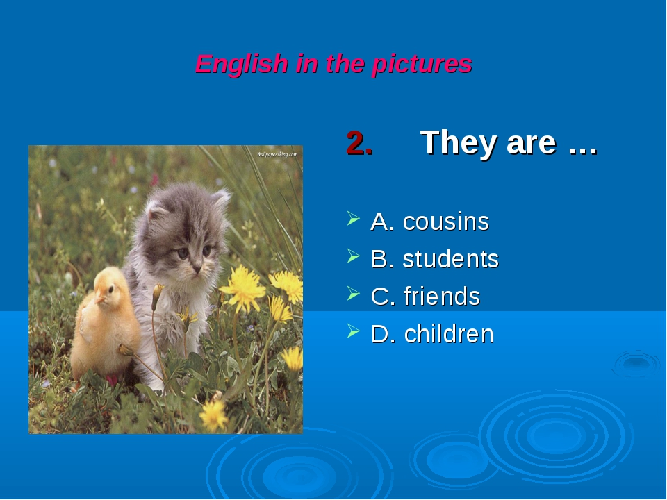 English in the pictures 2. They are … A. cousins B. students C. friends D. ch...