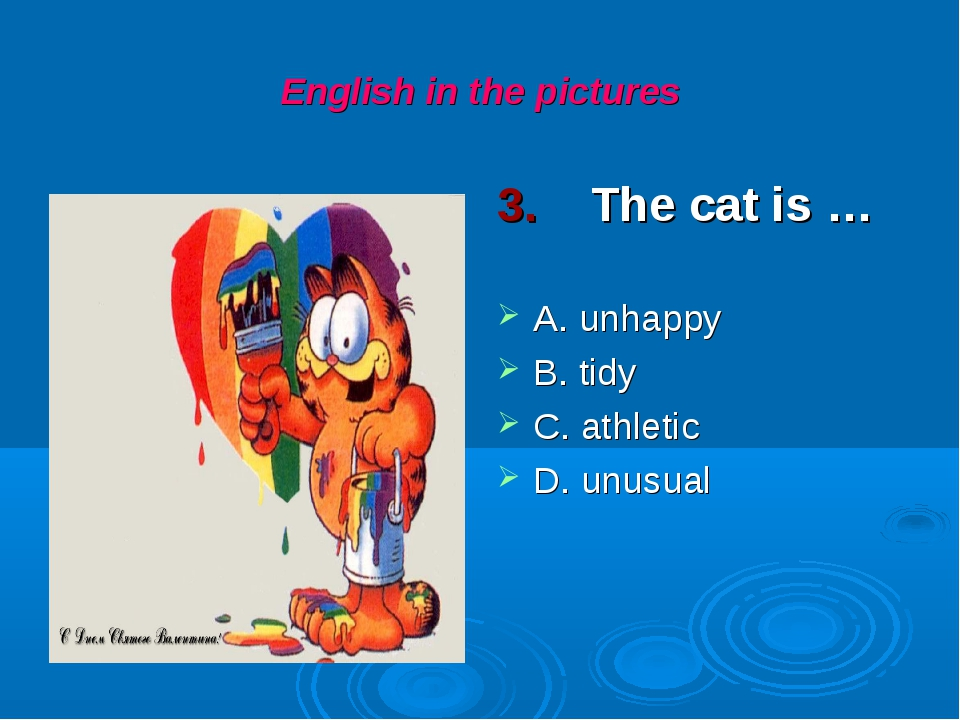English in the pictures 3. The cat is … A. unhappy B. tidy C. athletic D. unu...