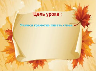 Цель урока : Учимся грамотно писать слова