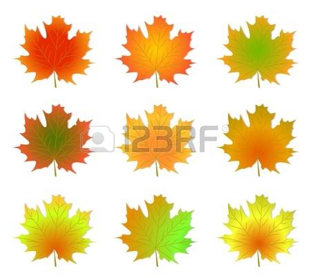 C:\Users\123\Desktop\кленовые листья.jpg