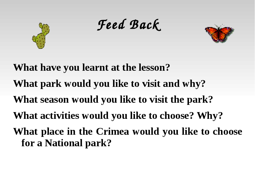 Feed Back What have you learnt at the lesson? What park would you like to vis...