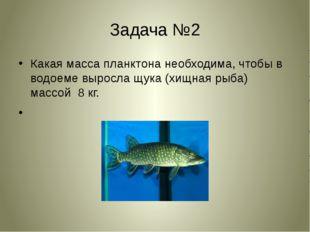 Задача №2 Какая масса планктона необходима, чтобы в водоеме выросла щука (хищ